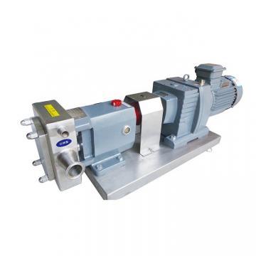 Vickers PVB10-LS-31-CC-11-PRC Piston Pump PVB