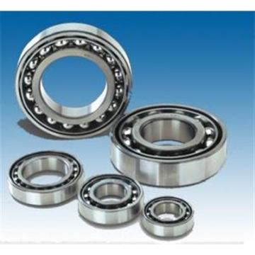 Hot Sales Precision Quality Cylindrical Roller Bearing (NF205)
