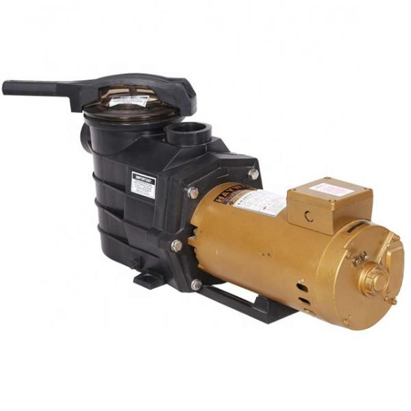 Vickers PV016L1L1T1NMR14545 Piston Pump PV Series #2 image